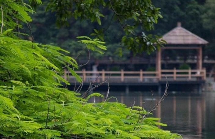 海安七星湖生态园